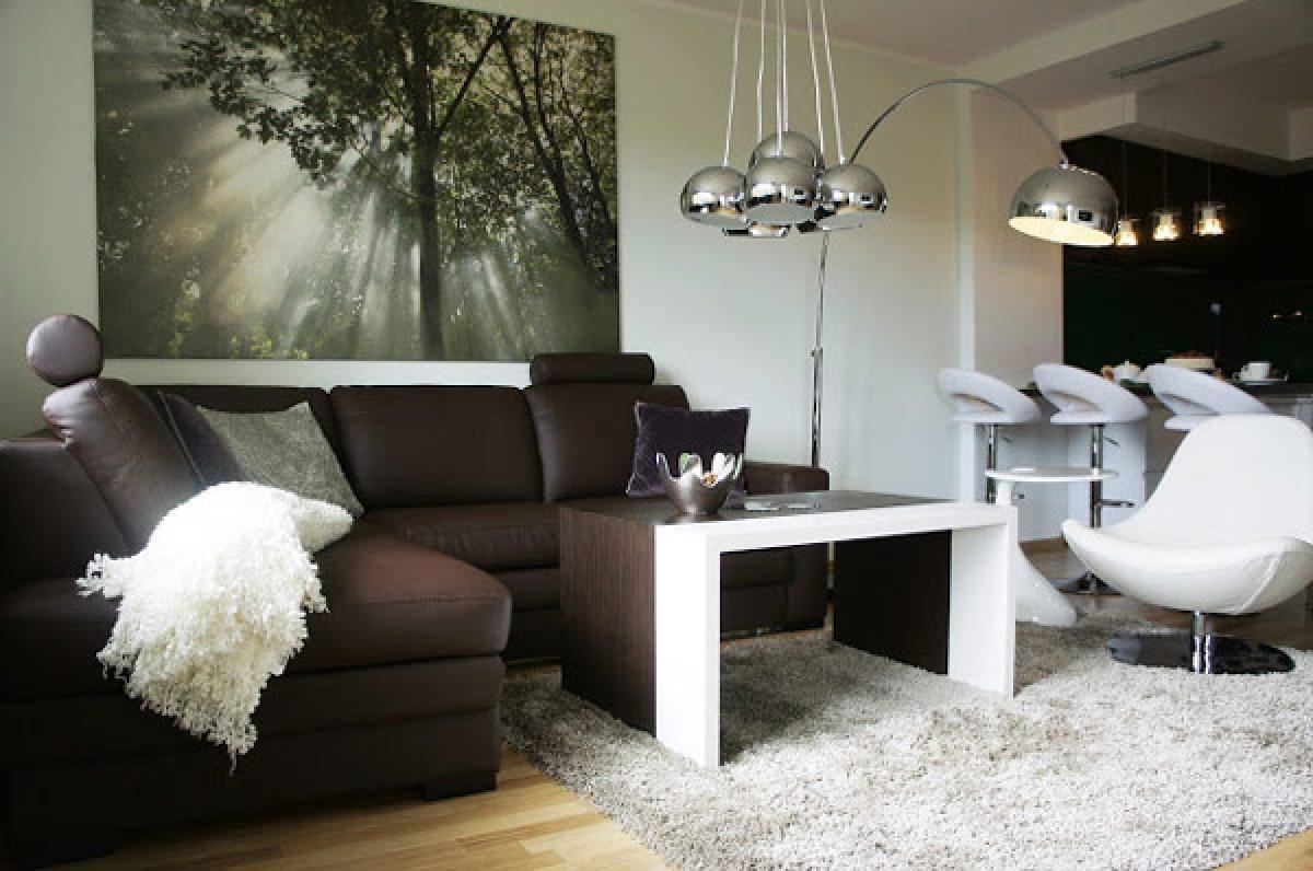 Коричневый диван в интерьере (8)