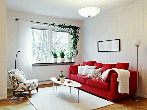 Красный диван (27)