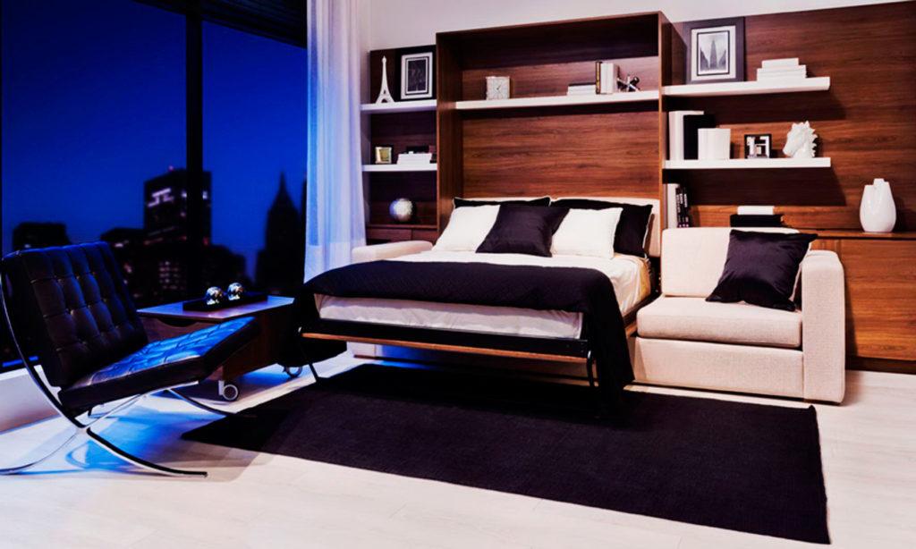 Фото гостиной комнаты с откидной двуспальной кроватью