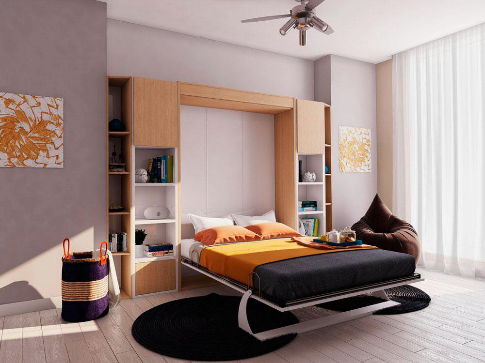 Гостиная комната с двуспальной откидной кроватью в интерьере