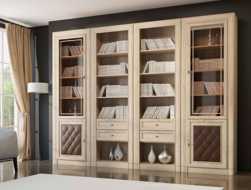 Книжный шкаф - виды и устройство как выбрать шкаф для книг.