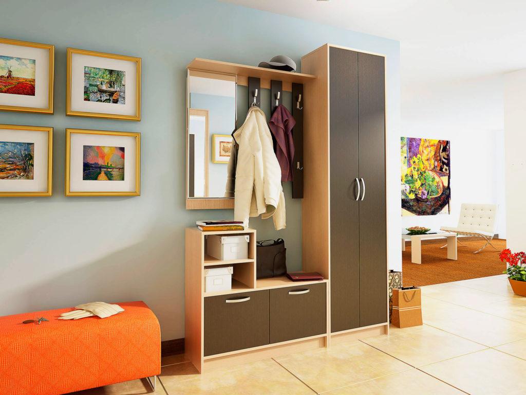 Фото мебельного гарнитура с двустворчатым шкафом в интерьере прихожей.