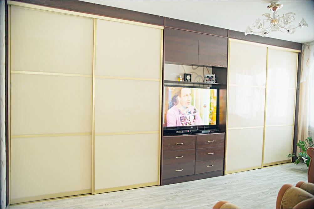 shkaf-kupe-s-televizorom (3)