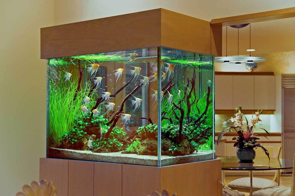 tumba-pod-akvarium (10)