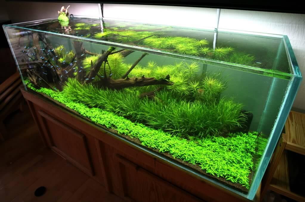 tumba-pod-akvarium (11)